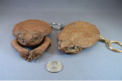 Cane Toad Key Purse