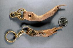 Cane Toad Leg Key Ring