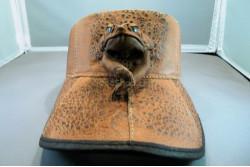 Cane Toad Leather Sun Visor