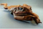 Four Leg Cane Toad Shoulder Purse