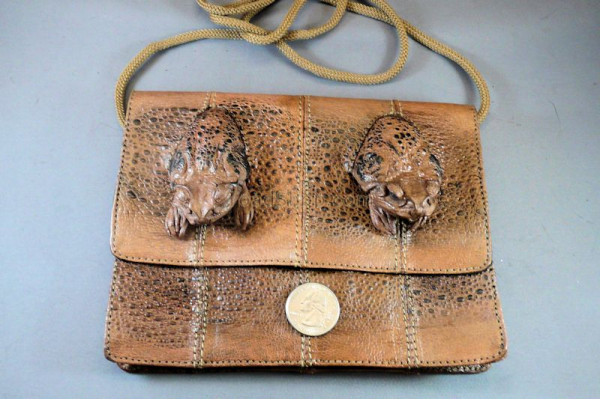 Cane Toad Rectangular Shoulder Bag with 2 heads