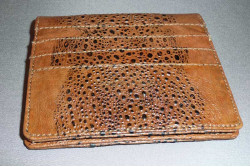 Cane Toad Card Case (16 slot)