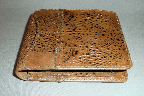 Cane Toad Leather Wallet with Coin Holder