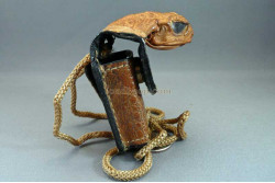 Cane Toad Zippo Lighter Case